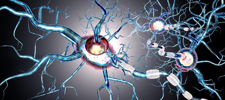 ¿Cómo actuar ante una crisis de epilepsia?